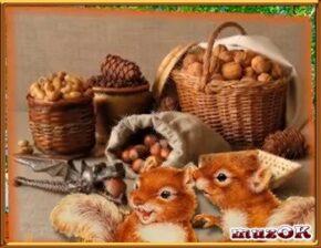 Видео поздравление с ореховым и хлебным спасом