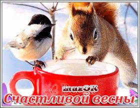 Счастливой весны, друзья. Видео открытка.