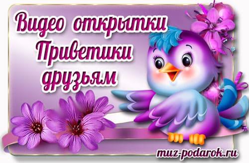 Категория видео открытки Приветы друзьям.
